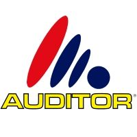 auditor-sistemas-de-gestao-e-controlo